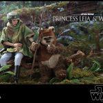 Princess Leia y Wicket – Set de Hot Toys